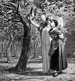 RESTORED BY FAITH The Girl Without Hands, from the story by the Brothers Grimm, from an image by Philipp Grot Johann (1841-1892).