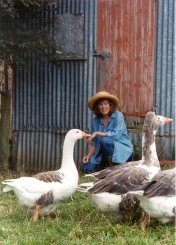 MARY'S Mary Moody with some of Glenray Park's geese.