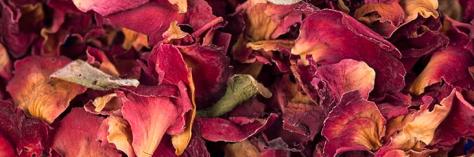 Dried-Petals