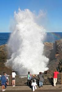 THERE SHE BLOWS Kiama Blowhole in action.
