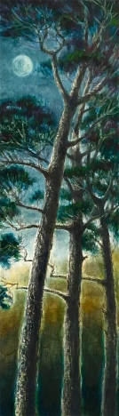 Cypress Pines,